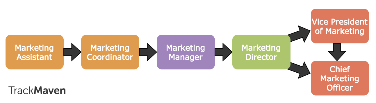 marketing career path essay You are here: home / career advice / sports marketing jobs: do you have what it takes  sincé i ended school in 07, my popular career path was sports marketing, .